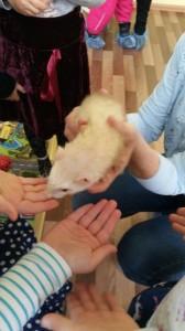 встреча с животными в детском центре наши дети в Марьино (106)