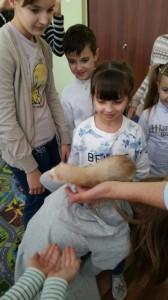 встреча с животными в детском центре наши дети в Марьино (111)