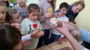 встреча с животными в детском центре наши дети в Марьино (115)