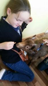 встреча с животными в детском центре наши дети в Марьино (116)