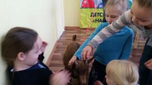 встреча с животными в детском центре наши дети в Марьино (118)