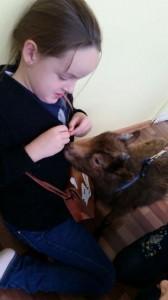 встреча с животными в детском центре наши дети в Марьино (134)