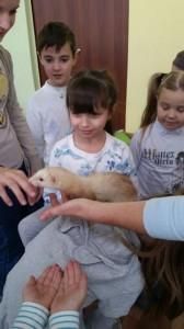 встреча с животными в детском центре наши дети в Марьино (141)