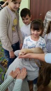 встреча с животными в детском центре наши дети в Марьино (142)