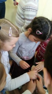 встреча с животными в детском центре наши дети в Марьино (143)