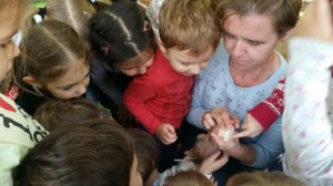 встреча с животными в детском центре наши дети в Марьино (147)
