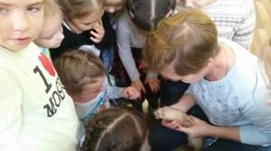 встреча с животными в детском центре наши дети в Марьино (149)