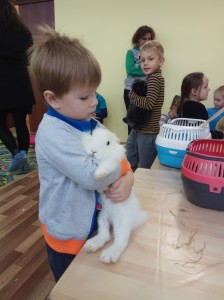 встреча с животными в детском центре наши дети в Марьино (20)