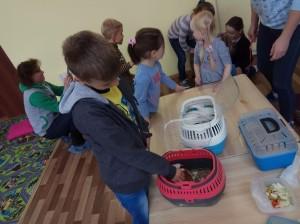 встреча с животными в детском центре наши дети в Марьино (36)