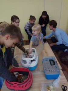 встреча с животными в детском центре наши дети в Марьино (37)