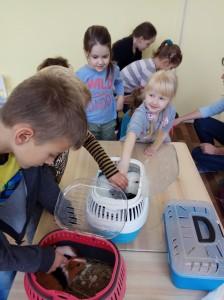 встреча с животными в детском центре наши дети в Марьино (38)