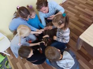 встреча с животными в детском центре наши дети в Марьино (43)