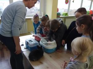встреча с животными в детском центре наши дети в Марьино (44)