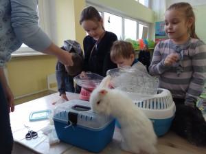 встреча с животными в детском центре наши дети в Марьино (45)