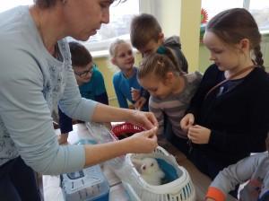 встреча с животными в детском центре наши дети в Марьино (48)