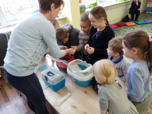 встреча с животными в детском центре наши дети в Марьино (49)