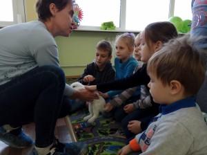 встреча с животными в детском центре наши дети в Марьино (57)