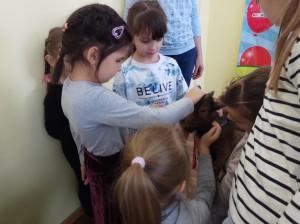 встреча с животными в детском центре наши дети в Марьино (70)