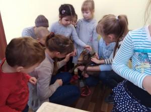 встреча с животными в детском центре наши дети в Марьино (74)