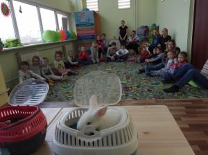 встреча с животными в детском центре наши дети в Марьино (97)
